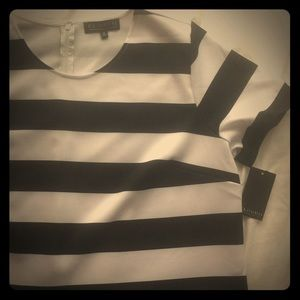 Large Stripe Black and White Eloquii Top